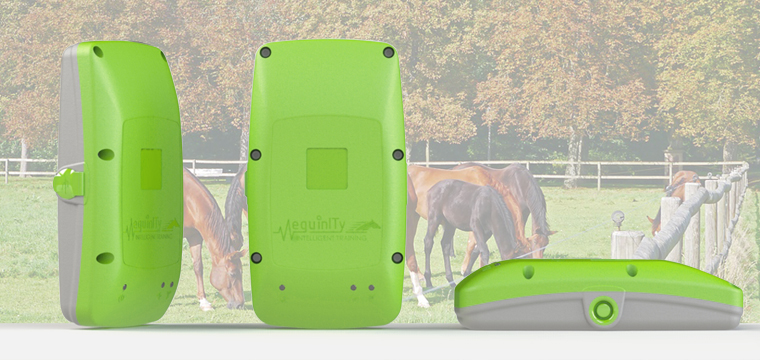 Horse Welfare & Fitness Monitor